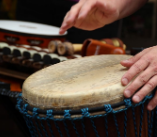 The 5 Best Djembes for Sound Quality and Design